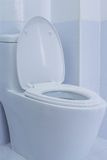 toalett Royaltyfri Bild