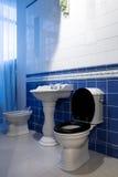 Toalettbunke och vask Royaltyfria Foton