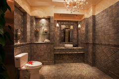 Toaletten Arkivfoton