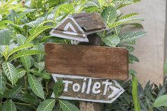 Toaletten undertecknar i semesterorten göras från gammalt träbräde på bakgrund för gröna växter royaltyfri fotografi