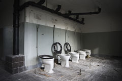 toaletter Arkivfoto