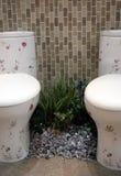 toaletter royaltyfria bilder
