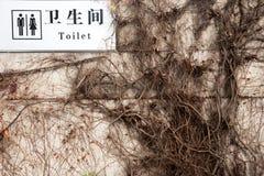 Toaletter uttrycker hangin för tecknet för lon för det engelska och kinesiska språket vit Arkivbilder