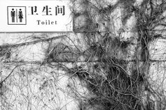Toaletter uttrycker hangin för tecknet för lon för det engelska och kinesiska språket vit Royaltyfri Bild