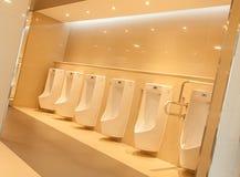 Toalettinre Royaltyfria Bilder
