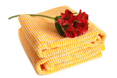 Toalha de banho com Alstroemeria fresco Fotos de Stock Royalty Free