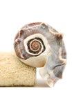 Toalha e seashell dos termas Fotografia de Stock Royalty Free