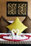 Toalhas da cisne Fotos de Stock Royalty Free