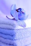 Toalhas no azul Fotografia de Stock Royalty Free