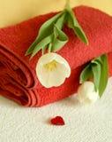 toalhas, tulips e coração de banho Fotografia de Stock Royalty Free