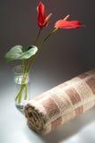 Toalla de baño Imagen de archivo libre de regalías