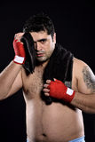 Toalla de mano del boxeador Imágenes de archivo libres de regalías