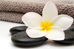 Toalla del masaje Fotos de archivo libres de regalías