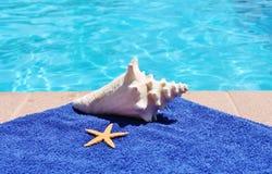 Toalla escénica de las estrellas de mar de la cáscara de la concha del día de fiesta del Poolside fotos de archivo
