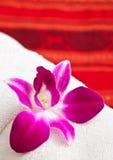 Toalla y orquídea blancas imagen de archivo libre de regalías