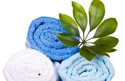 Toallas blancas y azules con la planta Imagenes de archivo