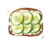 Toart con el pepino, aceite de oliva y salsa blanca o queso libre illustration