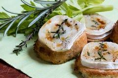 Здравица и сыр козочки Стоковое фото RF
