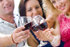Toast. Portrait of young happy attractive people having some wine Royalty Free Stock Photo