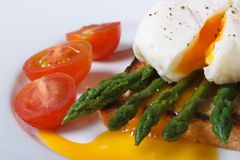 Toast with asparagus, egg Benedict and tomatoes macro. Royalty Free Stock Photography