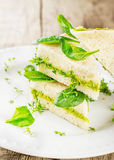 Toast with avocado paste and watercress Royalty Free Stock Images