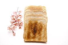 Toast brown baked Royalty Free Stock Photography