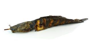 Toast Catfish isolated on a white background Stock Photo