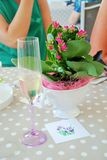 Flowers and champagne for a celebration. Toast with champagne in a celebration, in a wedding, in christmas, in a party, in a family party, in a friends party Stock Photography