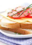 Toast with cheese Royalty Free Stock Image
