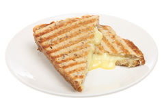 Toast Cheese Pressed Sandwich Stock Image