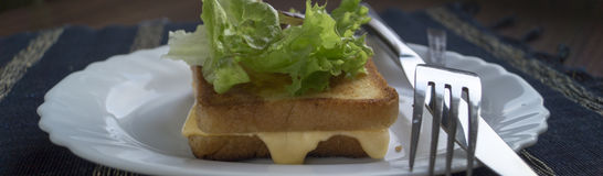 Toast with cheese. Toast with cheese and salad Stock Image