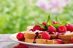 Toast with cottage cheese and fresh raspberries Royalty Free Stock Images