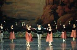 Toast dance-ballet Swan Lake Stock Photography