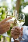 Toast des weißen Weins Lizenzfreies Stockbild