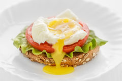 Toast with egg poached, tomato and lettuce leaf on a white plate Royalty Free Stock Image