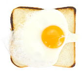 Toast with fried egg Royalty Free Stock Photos