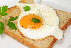Toast with fried egg and parsley Royalty Free Stock Images
