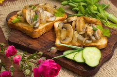 Toast with fried mushrooms and vegetables on the background color. Close-up Royalty Free Stock Images