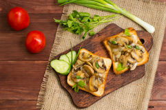 Toast with fried mushrooms and vegetables on the background color. Top view. Close-up Royalty Free Stock Image