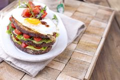 Toast from a grain bread with cheese and tomatoes and egg. Vegetarian food. on a white plate and a wooden background. Useful. Breakfast. Free space for writing Stock Image
