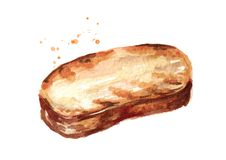 Toast. Grilled bread. Watercolor hand drawn illustration, isolated on white background.  stock illustration