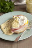 Toast with Hollandaise sauce Royalty Free Stock Image