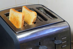 Toast inside a toaster just popped up. Royalty Free Stock Image