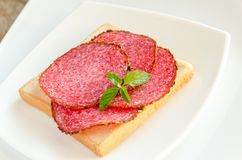 Toast with italian salami Royalty Free Stock Photos