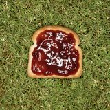 Toast with jam on grass Stock Photo