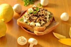 Toast mit Pilzen und Ziegenkäse Lizenzfreies Stockfoto