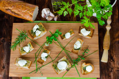 Toast with mozzarella, olive oil, herbs and garlic Royalty Free Stock Image
