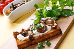 Toast with mushrooms Stock Photo