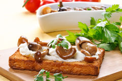 Toast with mushrooms Royalty Free Stock Photo