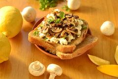 Toast with mushrooms and goat cheese Royalty Free Stock Photo